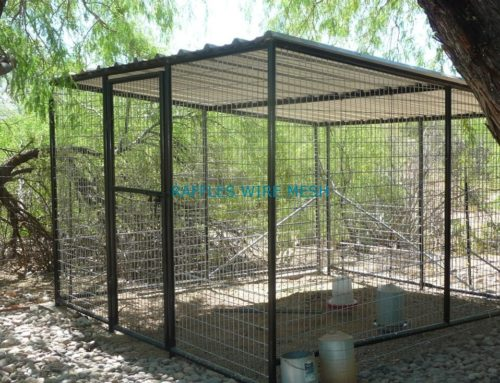 Buying the Best Aviaries